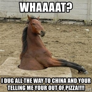 Hole Horse - Whaaaat? I Dug All The Way To China And Your Telling Me YOUR OUT OF PIZZA!!!!