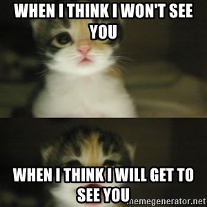 Adorable Kitten - when i think i won't see you when i think i will get to see you