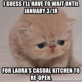 Super Sad Cat - I guess I'll have to wait until January 3/18 For Laura's Casual Kitchen to re-open.