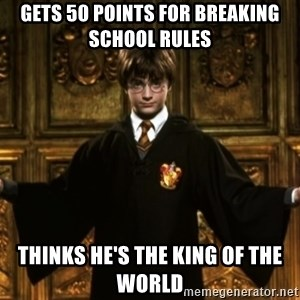Harry Potter Come At Me Bro - Gets 50 points for breaking school rules thinks he's the king of the world