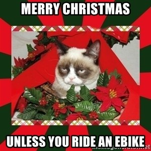 GRUMPY CAT ON CHRISTMAS - Merry Christmas Unless You Ride An EBike