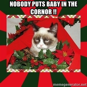 GRUMPY CAT ON CHRISTMAS - NOBODY PUTS BABY IN THE CORNOR !!