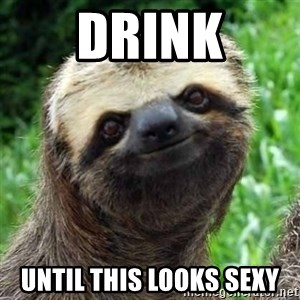 Sarcastic Sloth - Drink Until this looks sexy