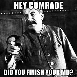 Joseph Stalin - hey comrade did you finish your md?