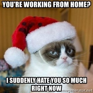 Grumpy Cat Santa Hat - You're working from home? I Suddenly hate you so much right now