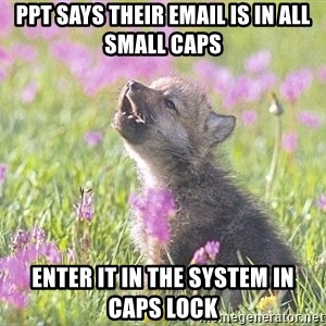 Baby Insanity Wolf - ppt says their email is in all small caps enter it in the system in caps lock