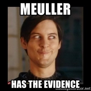 Tobey_Maguire - Meuller  has the evidence