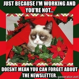 GRUMPY CAT ON CHRISTMAS - Just because I'm working and you're not... Doesnt mean you can forget about the Newsletter.