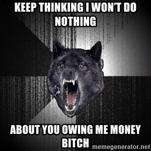 Insanity Wolf - Keep thinking I won't do nothing  About you owing me money bitch