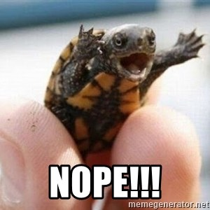 angry turtle - Nope!!!