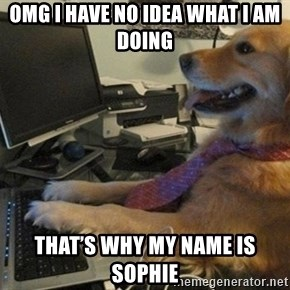 I have no idea what I'm doing - Dog with Tie - OMG I have no idea what I am doing That's why my name is Sophie