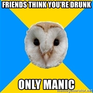Bipolar Owl - friends think you're drunk only manic