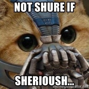 bane cat - not shure if  sherioush...
