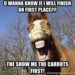Horse - u wanna know if i will finish on first place?? the show me the carrots first!