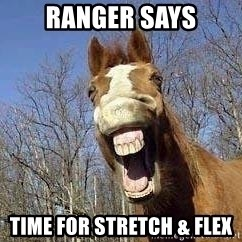 Horse - ranger says time for stretch & flex