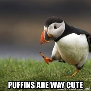 Unpopular Opinion Puffin - Puffins are way cute