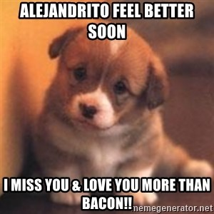 cute puppy - Alejandrito Feel Better Soon I miss you & Love you more than bacon!!