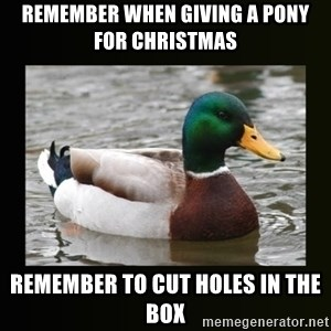 good advice duck - remember when giving a pony for christmas remember to cut holes in the box