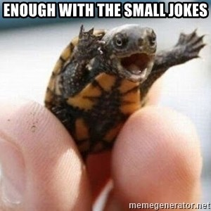 angry turtle - enough with the small jokes