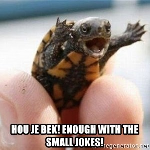angry turtle - Hou je bek! Enough with the small jokes!