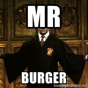 Harry Potter Come At Me Bro - Mr Burger