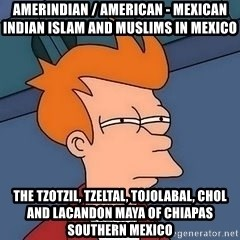 Fry squint - Amerindian / American - Mexican Indian Islam and Muslims in Mexico  The Tzotzil, Tzeltal, Tojolabal, Chol and Lacandon Maya of Chiapas Southern Mexico