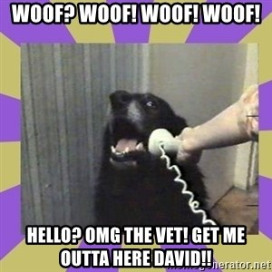 Yes, this is dog! - woof? WOOF! WOOF! WOOF! hELLO? OMG THE VET! GET ME OUTTA HERE DAVID!!