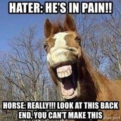 Horse - Hater: He's in pain!! Horse: REALLY!!! Look at this back end, you can't make this