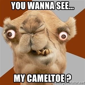 Crazy Camel lol - You wanna see... MY CAMELTOE ?