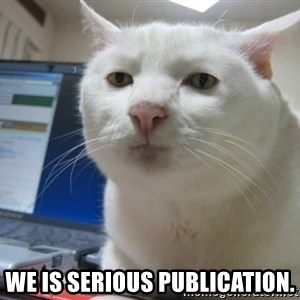 Serious Cat - We is Serious publication.