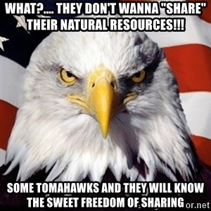 "Freedom Eagle  - what?.... they don't wanna ""share"" their natural resources!!! some tomahawks and they will know the sweet freedom of sharing"