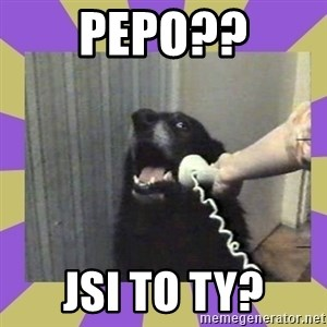 Yes, this is dog! - pEPO?? jSI TO TY?