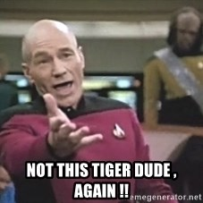 Picard Wtf - not this tiger dude , again !!