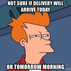 Futurama Fry - NOT SURE IF DELIVERY WILL ARRIVE TODAY OR TOMORROW MORNING