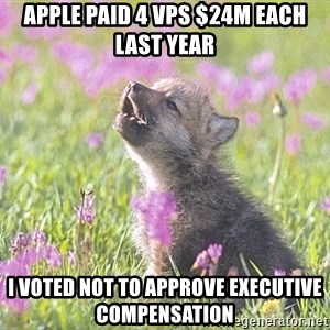 Baby Insanity Wolf - Apple paid 4 VPs $24M each last year  I voted not to approve executive compensation