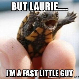 angry turtle - But Laurie..... I'm a fast little guy