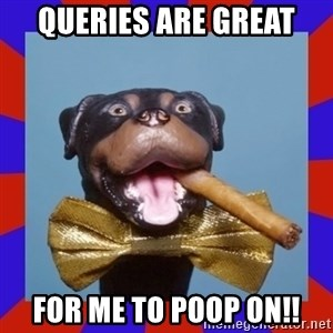 Triumph the Insult Comic Dog - Queries are great For me to poop on!!