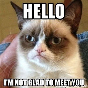 Grumpy Cat  - Hello I'm not glad to meet you