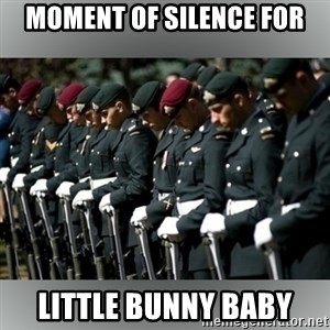 Moment Of Silence - MOMENT OF SILENCE FOR LITTLE BUNNY BABY