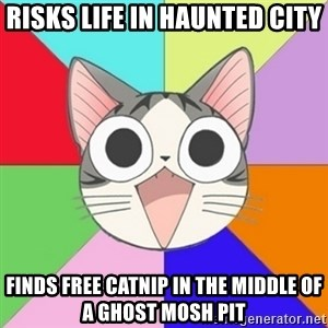 Nya Typical Anime Fans  - Risks life in haunted city Finds free catnip in the middle of a ghost mosh pit