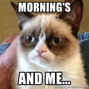 Grumpy Cat  - Morning's And Me...