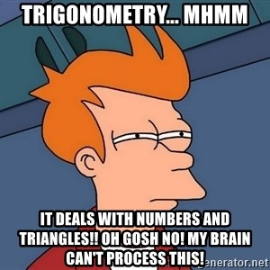 Futurama Fry - Trigonometry... Mhmm It deals with numbers and triangles!! OH GOSH NO! My brain can't process this!