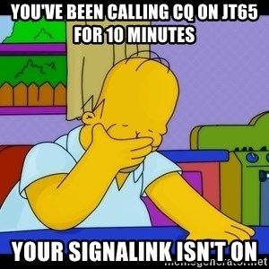 Homer Facepalm - You've been calling cq on JT65 for 10 minutes your Signalink isn't on