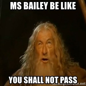 Gandalf You Shall Not Pass - Ms Bailey be like You shall not pass