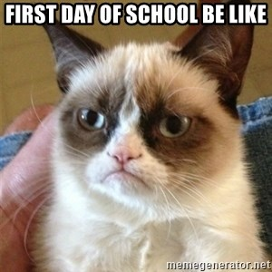 Grumpy Cat  - first day of school be like