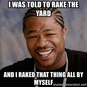Yo Dawg - I was told to rake the yard and I raked that thing all by myself