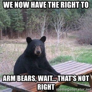 Patient Bear - We now have the right to arm bears, wait... that's not right