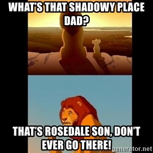 Lion King Shadowy Place - What's that shadowy place dad? That's rosedale son, don't ever go there!