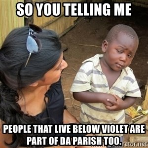 skeptical black kid - So You telling me People that live below Violet are part of Da Parish too.