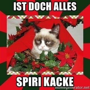 GRUMPY CAT ON CHRISTMAS - ist doch alles SPIRI KACKE
